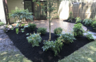 new-patio-and-landscaping-in-Mount-Laurel-New-Jersey-3