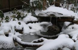 Copy of Winter 2011 038