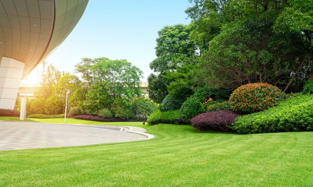 Mount Laurel Landscaping Companies